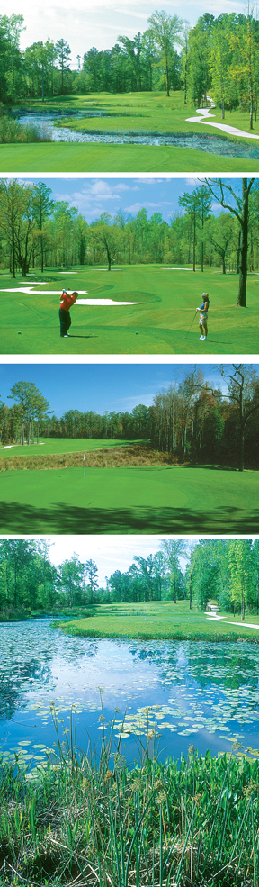 Coosaw Creek Country Club features stunning views of North Charleston nature.